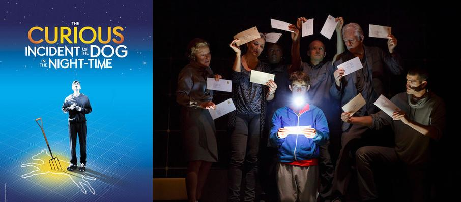 The Curious Incident of the Dog in the Night-Time at Pioneer Theatre Company